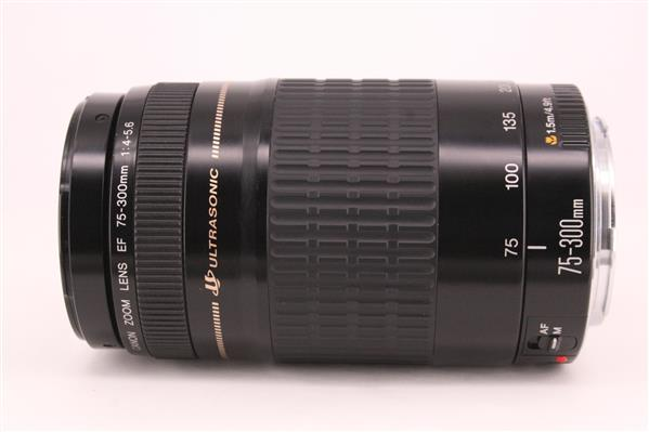 Canon EF 75-300mm f/4.0-5.6