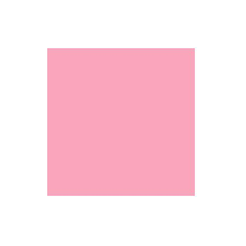 2.72x11m Carnation Paper Background Product Image (Primary)