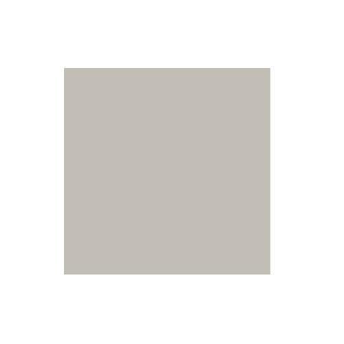 2.72x11m Platinum Paper Background Product Image (Primary)