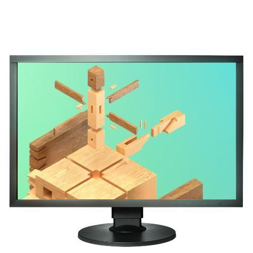 EIZO CS2420 WUXGA DP HDMI DVI Product Image (Primary)