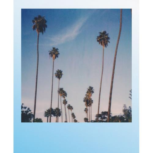 POLAROID Kit Box Summer Blue Product Image (Secondary Image 2)