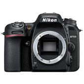 A picture of Nikon D7500 Digital SLR Body