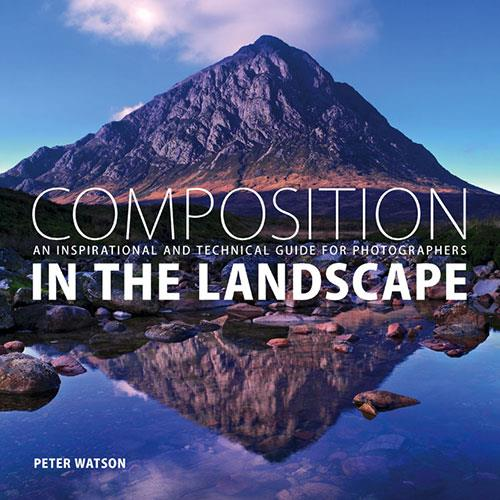 Ammonite Composition in the Landscape Book