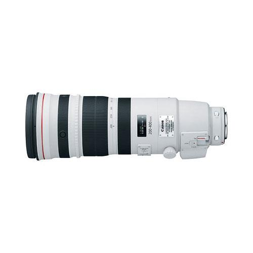Canon EF 200-400mm f/4L IS USM Lens with Extender 1.4x