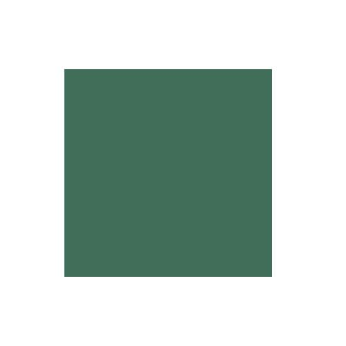 Colorama 1.35x11m Spruce Green Paper Background