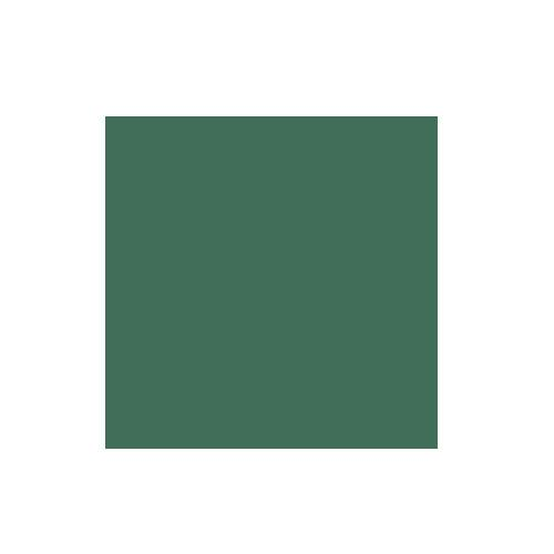Colorama 2.72x11m Spruce Green Paper Background