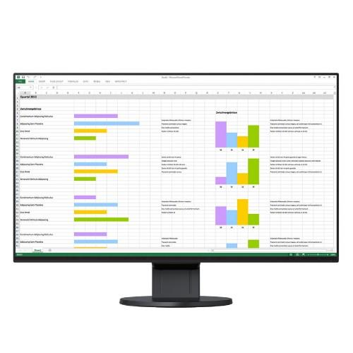 EIZO FlexScan EV2451 24 Inch IPS Monitor - Black