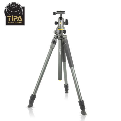 Vanguard  Alta Pro 2 + 263AB 100