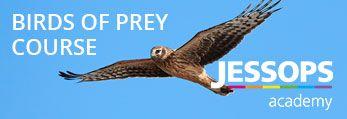 Jessops Academy